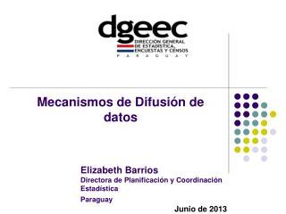 Elizabeth Barrios Directora de Planificación y Coordinación  Estadística Paraguay J unio  de 2013