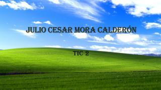 JULIO CESAR MORA CALDERÓN