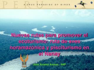 Nuevas rutas para promover el ecoturismo: ruta de aves noramazónica y pisciturismo en el Nanay