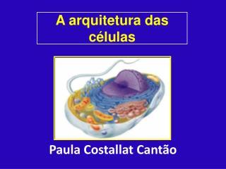 A arquitetura das c�lulas