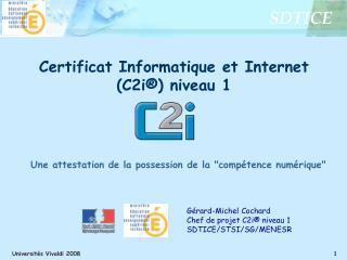 G rard-Michel Cochard Chef de projet C2i  niveau 1 SDTICE