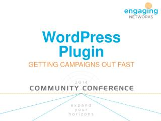 WordPress Plugin GETTING CAMPAIGNS OUT FAST