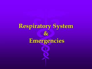 Respiratory System &  Emergencies