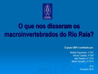O que nos disseram os macroinvertebrados do Rio Raia?