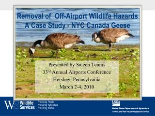 Removal of  Off-Airport Wildlife Hazards A Case Study - NYC Canada Geese