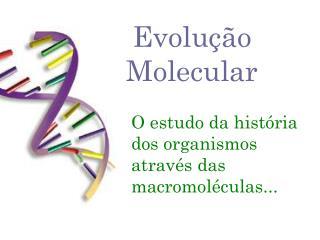 Evolução  Molecular