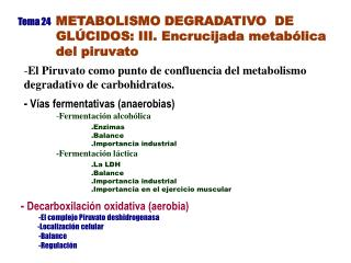 Tema 24 METABOLISMO DEGRADATIVO  DE  GLÚCIDOS: III. Encrucijada metabólica  del piruvato