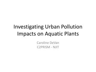 Investigating Urban Pollution Impacts on Aquatic Plants