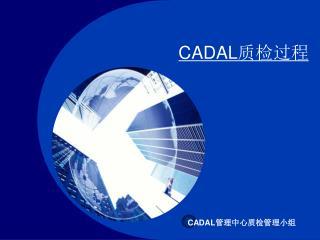CADAL 质检过程