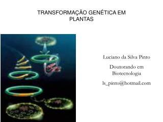 TRANSFORMA  O GEN TICA EM PLANTAS