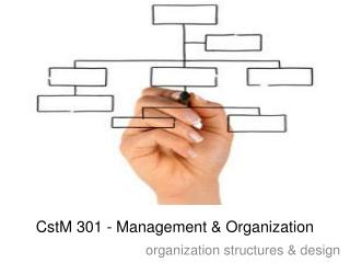 CstM 301 - Management & Organization