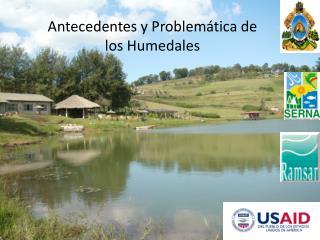 Antecedentes y Problemática de los Humedales