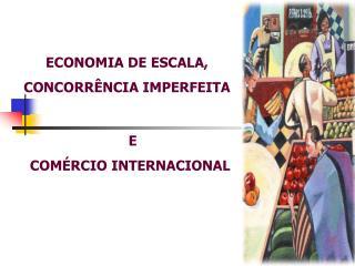 ECONOMIA DE ESCALA,  CONCORRÊNCIA IMPERFEITA