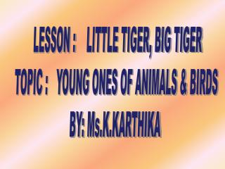LESSON  :     LITTLE TIGER, BIG TIGER TOPIC :   YOUNG ONES OF ANIMALS &  BIRDS BY:  Ms.K.KARTHIKA