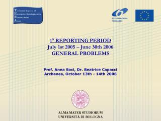 1° REPORTING PERIOD July 1st 2005 – June 30th 2006 GENERAL PROBLEMS