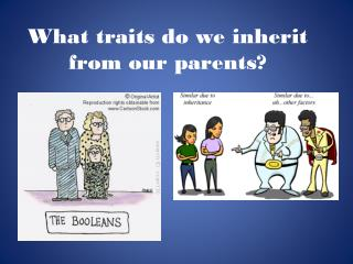 What traits do we inherit from our parents?