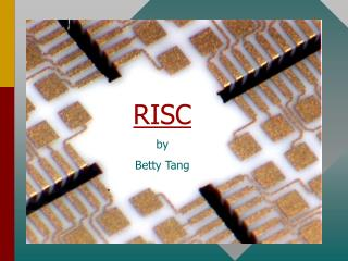 RISC    by  Betty Tang