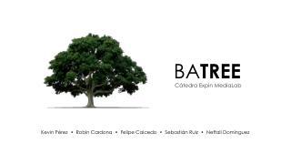 BA TREE