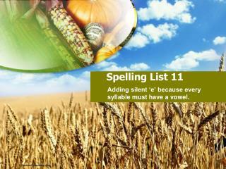 Spelling List 11