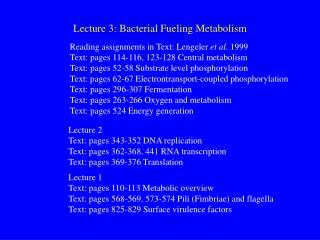 Lecture 3: Bacterial Fueling Metabolism