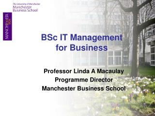 Professor Linda A Macaulay Programme Director Manchester Business School