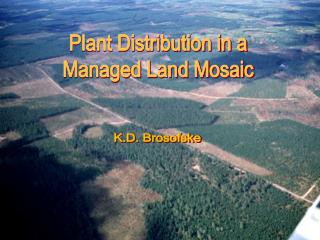Plant Distribution in a Managed Land Mosaic