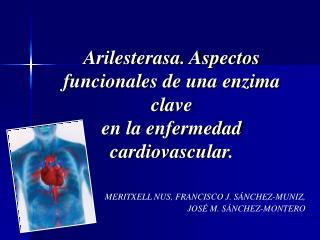 Arilesterasa. Aspectos  funcionales de una enzima clave en la enfermedad cardiovascular.