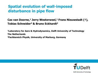 Spatial evolution of wall-imposed disturbance in pipe flow