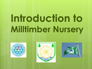 Introduction to  Milltimber  Nursery