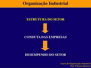 Organiza��o Industrial