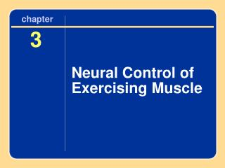 Neural Control of Exercising Muscle