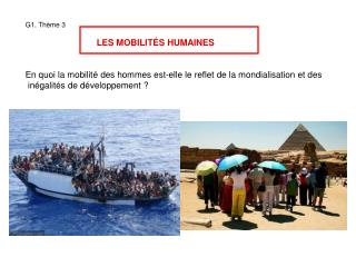 G1. Th � me 3 LES MOBILIT � S HUMAINES