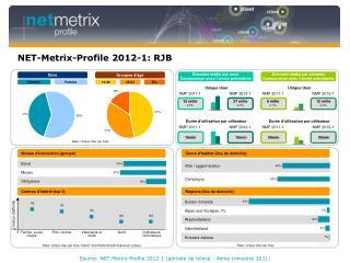 NET-Metrix-Profile 2012-1: RJB