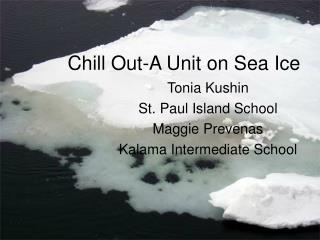 Chill Out-A Unit on Sea Ice