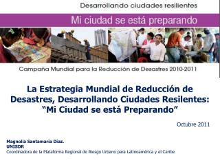 La Estrategia Mundial de Reducción de Desastres, Desarrollando Ciudades Resilentes: