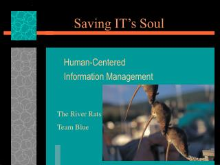 Saving IT's Soul