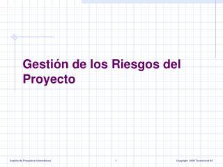 Gestión de los Riesgos del Proyecto