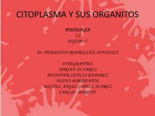CITOPLASMA Y SUS ORGANITOS