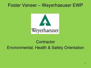 Foster Veneer – Weyerhaeuser EWP