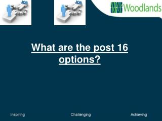 What are the post 16 options?