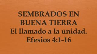 SEMBRADOS EN BUENA TIERRA El llamado a la unidad. Efesios 4:1- 16