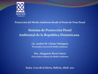 Protección del Medio Ambiente desde el Punto de Vista Penal  Sistema de Protección Penal