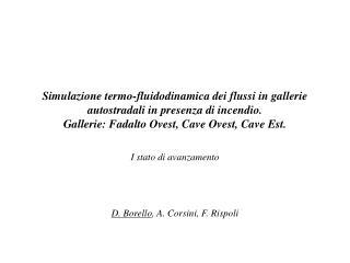 I stato di avanzamento  D. Borello , A. Corsini, F. Rispoli