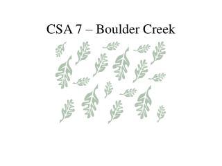 CSA 7 – Boulder Creek