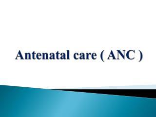 Antenatal care ( ANC )