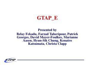 GTAP_E