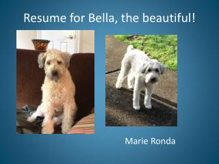 Resum e  for Bella, the beautiful!
