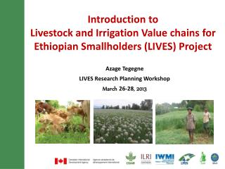 Introduction to  Livestock and Irrigation Value chains for Ethiopian Smallholders (LIVES) Project