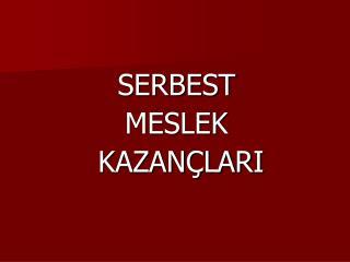 SERBEST  MESLEK  KAZAN�LARI