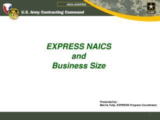 EXPRESS NAICS  and  Business Size